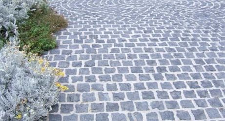 Coastal plants with cobblestones. Original picture source not known, found on By the Sea
