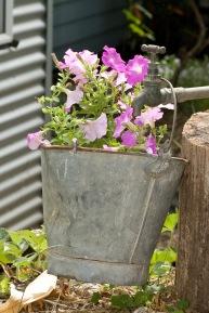 Spring in the garden.