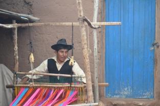 Copomaya weaver