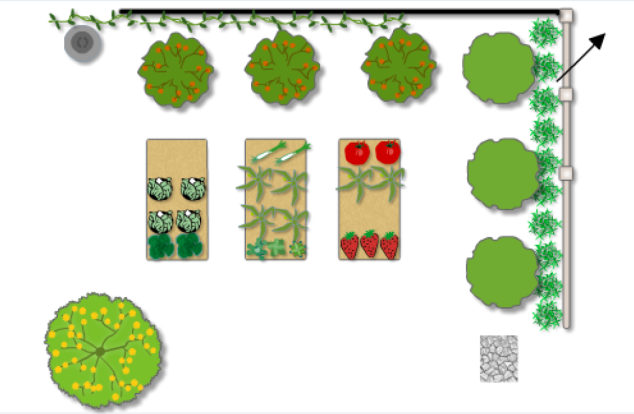 My veggie plan as drawn on  the Online Planner:  work in progress.