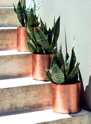 Garden Life copper pots