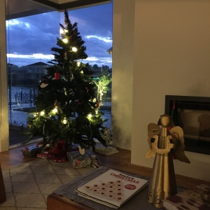 Christmas tree at night.